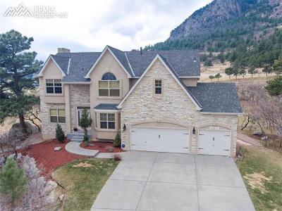 Colorado Springs Single Family Home For Sale: 585 Paisley Drive