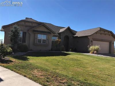 Colorado Springs Single Family Home For Sale: 2453 Cinnabar Road
