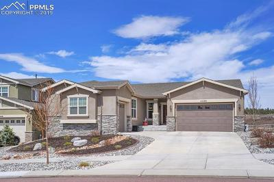 Single Family Home For Sale: 4458 Outlook Ridge Trail