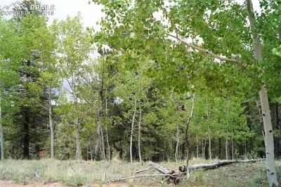 Cripple Creek Residential Lots & Land For Sale: 121 Gold Crown Circle