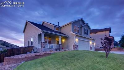 Castle Rock Single Family Home For Sale: 675 Eaglestone Drive