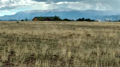 Guffey Residential Lots & Land For Sale: 90 Meadow Lane