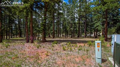 Woodland Park Residential Lots & Land For Sale: 610 Chipmunk Drive
