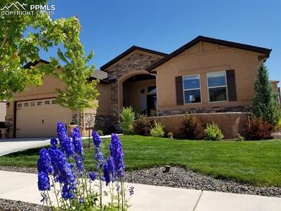 Colorado Springs Single Family Home For Sale: 1429 Yellow Tail Drive
