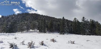 Cripple Creek Residential Lots & Land For Sale: 146 Andes Road