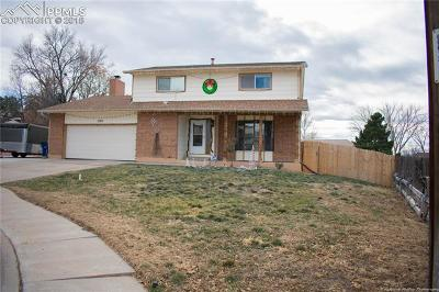 Pueblo Single Family Home For Sale: 1102 Candytuft Court