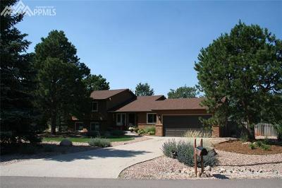 Colorado Springs Single Family Home For Sale: 205 Scottsdale Drive