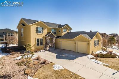 Colorado Springs Single Family Home For Sale: 9345 Rock Pond Way
