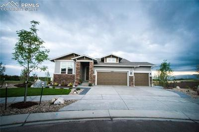 Colorado Springs Single Family Home For Sale: 10004 Crews Gulch Court