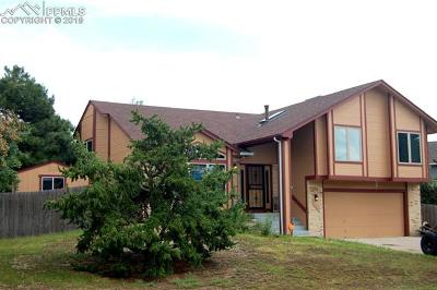 Briargate Single Family Home For Sale: 7755 Conifer Drive