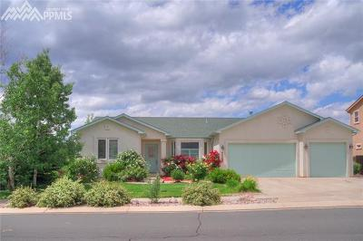 Colorado Springs Single Family Home For Sale: 6980 Granite Peak Drive