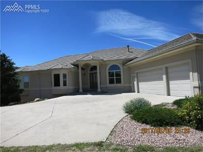 Castle Rock Single Family Home For Sale: 529 Summer Mist Circle