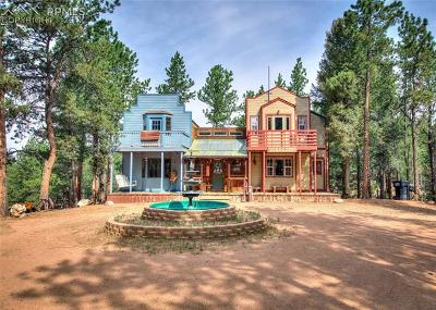 Florissant Single Family Home For Sale: 773 Arapahoe Creek Trail