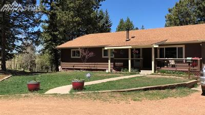 Woodland Park Single Family Home For Sale: 989 Markus Road
