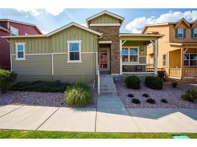 Colorado Springs Single Family Home For Sale: 1357 Cresson Mine Drive