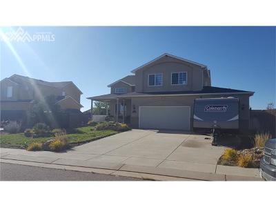 Peyton Single Family Home For Sale: 10941 Redington Drive
