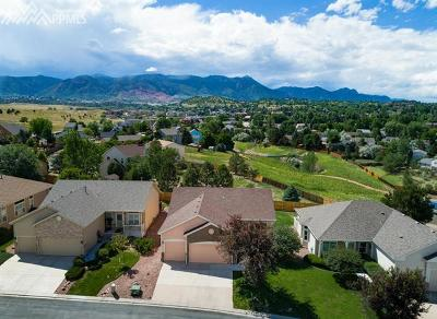 Colorado Springs Single Family Home For Sale: 6150 Perfect View
