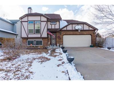 Colorado Springs Multi Family Home For Sale: 4428 Anvil Drive
