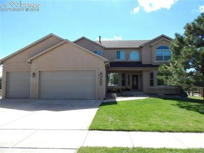 Colorado Springs Single Family Home For Sale: 2425 Vanreen Drive