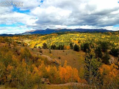 Cripple Creek Residential Lots & Land For Sale: 468 Golden Cycle Circle