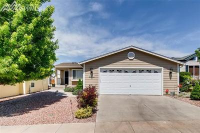 El Paso County Single Family Home For Sale: 4054 Gray Fox Heights
