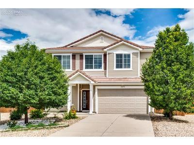 Colorado Springs Single Family Home For Sale: 2470 Snow Cap Court