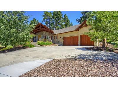Colorado Springs Single Family Home For Sale: 17575 Pond View Place