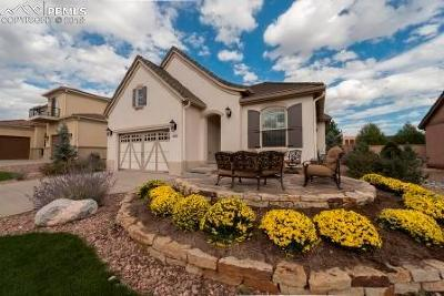 Colorado Springs Single Family Home For Sale: 2933 Cathedral Park View