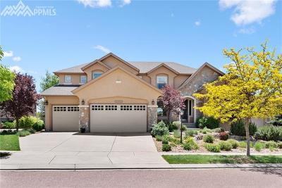 Pine Creek Single Family Home For Sale: 9368 Stoneglen Drive