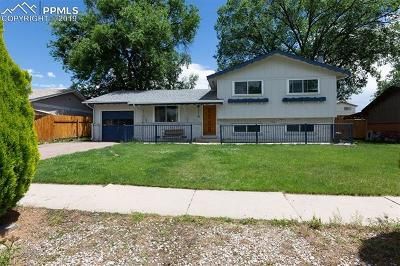 Colorado Springs Single Family Home For Sale: 1223 Royale Drive