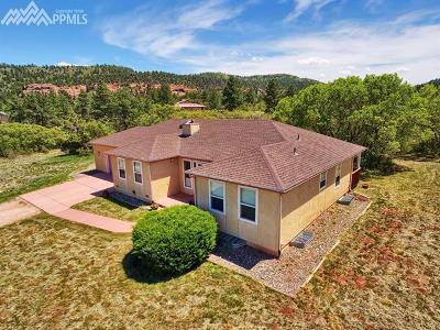 El Paso County Single Family Home For Sale: 11585 Valle Verde Drive