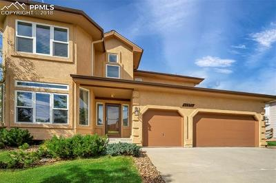 Colorado Springs Single Family Home For Sale: 12272 Mount Baldy Drive
