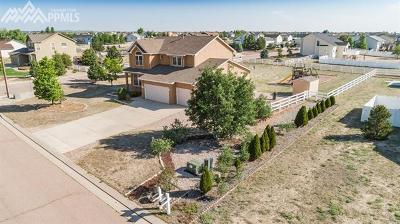 Peyton Single Family Home For Sale: 8347 Tibbs Road