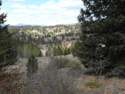 Cripple Creek Residential Lots & Land For Sale: 215 Derby Drive