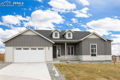 Castle Pines Single Family Home For Sale: 249 Merrimack Place