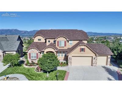 Colorado Springs Single Family Home For Sale: 9952 Oak Knoll Terrace