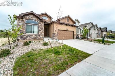 Peyton Single Family Home For Sale: 12660 Stone Valley Drive