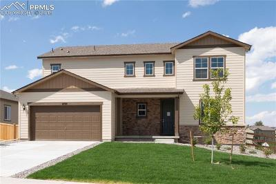 Castle Rock Single Family Home For Sale: 4199 Barbwire Place