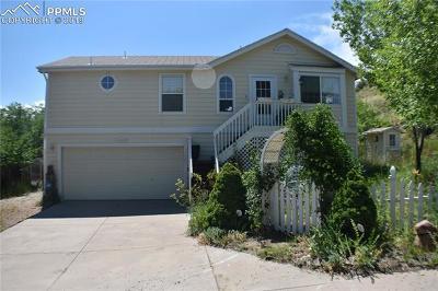 Colorado Springs Single Family Home For Sale: 970 Mesa Valley Road