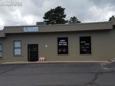 Business Opportunity For Sale: 330 S Baldwin Street
