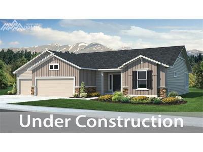 Hannah Ridge At Feathergrass Single Family Home For Sale: 2598 Hannah Ridge Drive
