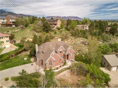 Colorado Springs Single Family Home For Sale: 250 Haversham Drive