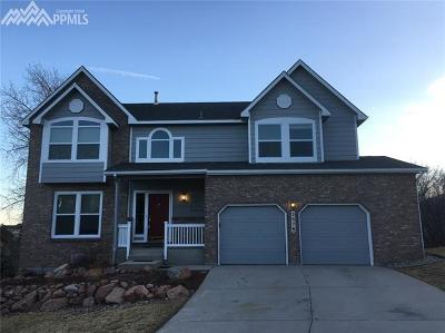 Colorado Springs Single Family Home For Sale: 2575 Edenderry Drive