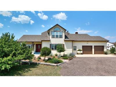Colorado Springs Single Family Home For Sale: 735 Struthers Loop