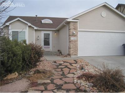 Colorado Springs Single Family Home For Sale: 7360 Prythania Park Drive