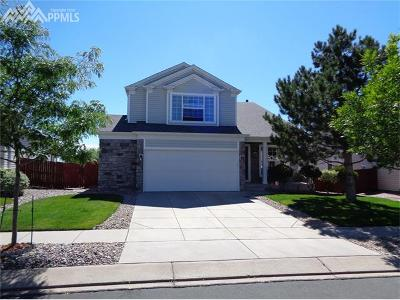 Colorado Springs Single Family Home For Sale: 5153 Sand Hill Drive