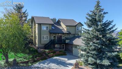 Castle Rock Single Family Home For Sale: 204 Cheney Place