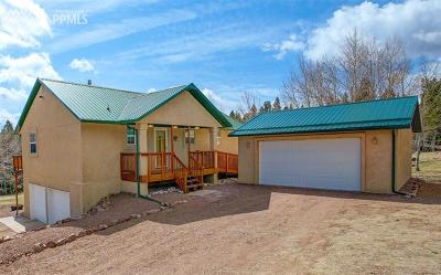 Single Family Home For Sale: 130 Panorama Drive