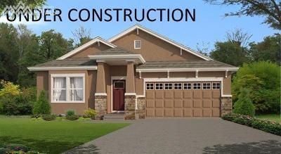 Colorado Springs Single Family Home For Sale: 8031 Barraport Drive