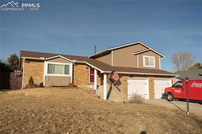 Single Family Home For Sale: 4245 Chenango Drive